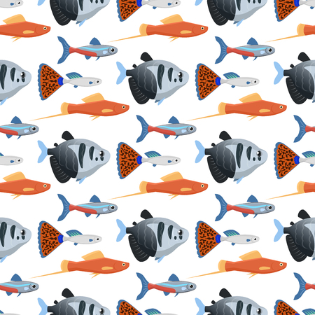 Exotic tropical aquarium fish in different colors. underwater ocean species aquatic nature flat vector illustration.
