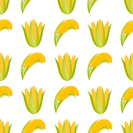 Corn vegetable cobs vector illustration seamless pattern on white background.