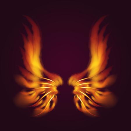 Vogel vuur vleugels vector fantasie veer brandende vlieg mystieke gloed vurige brandwond hete kunst vleugels illustratie op zwart.