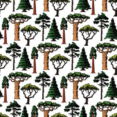 벡터 나무 스케치 손으로 그린 스타일 유형 녹색 숲 소나무 나무 자작 나무, 삼나무와 아카시아 또는 녹지 정원 팜 및 사쿠라 일러스트와 함께 완벽 한