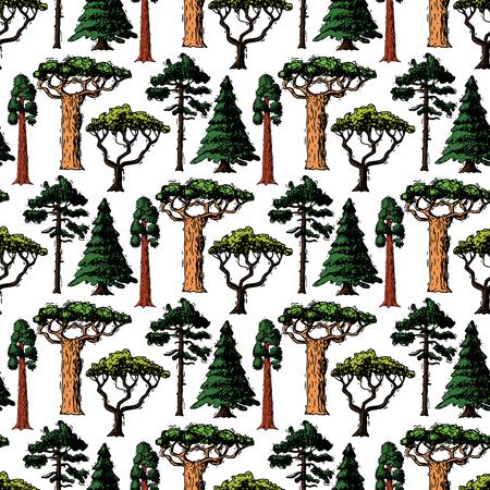야자수와 사쿠라 그림 원활한 패턴 배경 자작 나무, 삼나무와 아카시아 또는 녹지 정원의 벡터 트리 스케치 손으로 그린 스타일 유형 녹색 숲 소나무