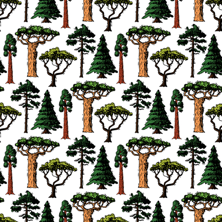A Vector tree sketch hand drawn style types green forest pine treetops collection of birch, cedar and acacia or greenery garden with palm and sakura illustration seamless pattern background Illustration