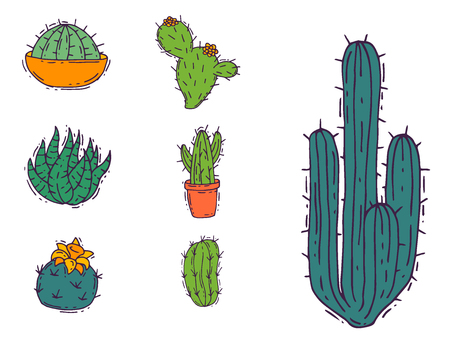 Cactus home nature vector illustration of green plant cactaceous tree with flower. Cute cartoon cactus nature cactaceous vector illustration. 일러스트