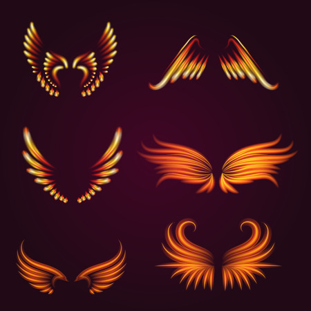 Bird fire wings vector fantasy feather burning fly mystic glow fiery burn hot art wings illustration on black.