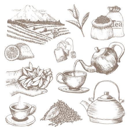 Vecteur de thé boire une boisson à base de plantes avec des feuilles sèches dans une tasse de thé sur l'illustration de l'heure du thé ensemble de théière et tasse dans un panier à thé isolé sur fond blanc Vecteurs