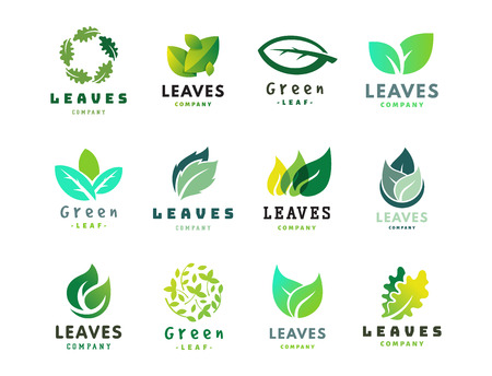 hoja verde eco diseño de la naturaleza elegancia elegancia símbolo y orgánica orgánica elemento ilustración vectorial ecología .