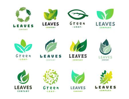 Green leaf eco design friendly nature elegance symbol and natural element ecology organic vector illustration. Vectores