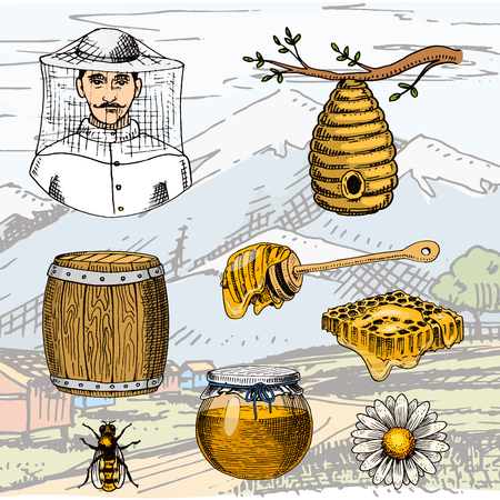 Apiary farm vector hand drawn vintage honey making farmer beekeeper illustration nature product by bee