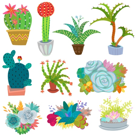 Cactus vector botanical cacti potted cute cactaceous succulent plant botany illustration floral set of cartoon exotic flowers isolated on white background.