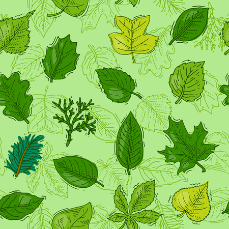 Leaf vector green leaves of trees leafed oak and leafy maple or leafing foliage illustration of leafage in spring set with leafage seamless pattern background Stock Photo