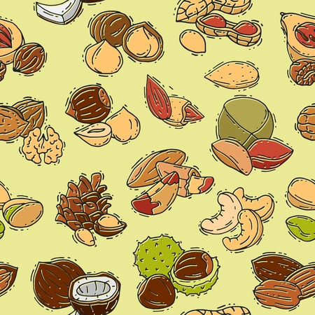 Nuts vector nutshell of hazelnut almond and walnut nutrition illustration set cashew peanut and chestnut with nutmeg seamless pattern background