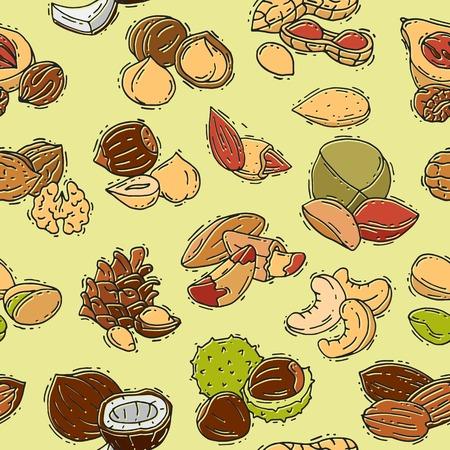Nuts vector nutshell of hazelnut almond and walnut nutrition illustration set cashew peanut and chestnut with nutmeg seamless pattern background