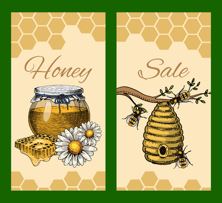 Honey waxing bee and beehive sale flyer. Poster organic honey and apiary, beehive and chamomile dessert nutrition vector illustration.