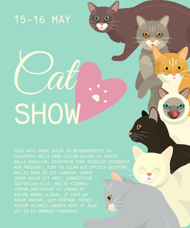 Cats show invitation card grooming or veterinary feline flyer vector illustration. Cute kitten pet poster. Funny animal studio. Lovely friendship advertisement pussy cat character.
