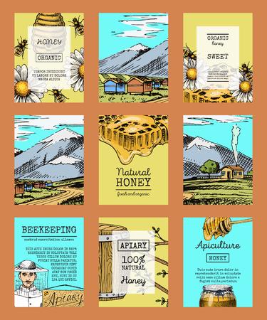 Honey farm cards waxing bee and beehive flyer. Poster organic honey and apiary, beehive and chamomile dessert nutrition vector illustration. Illusztráció