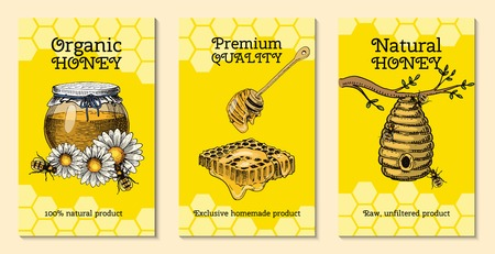 Honey farm cards waxing bee and beehive flyer. Poster organic honey and apiary, beehive and chamomile dessert nutrition vector illustration. Banner with hand drawn pictures apiary food industry. Ilustração