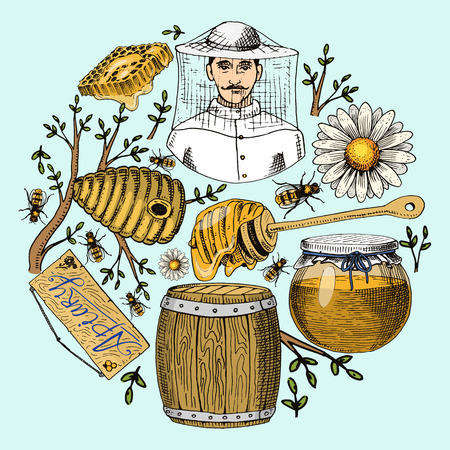 Honey waxing bee and beehive flyer. Poster organic honey and apiary, beehive and chamomile dessert nutrition food vector illustration. Banner with hand drawn beekeeper man.