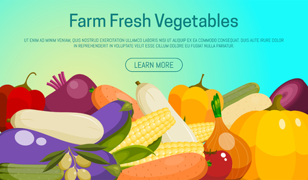 Farm fresh vegetables banner vector illustration. Food market. Vegetarian, natural and organic products. Healthy lifestyle. Includes pepper, tomato, potato, carrot, beet. Ilustração