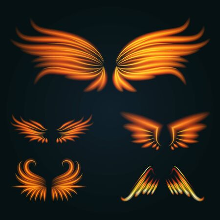 Bird fire wings fantasy feather burning fly mystic glow fiery burn hot art wings illustration on black.
