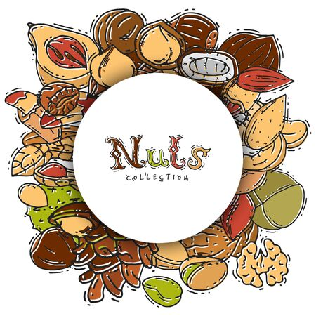 Nuts and seeds collection circle banner label vector illustration. Mixed labelled nuts. Different nut isolated and labels. Collection of pecan, cashew, almond in circle form