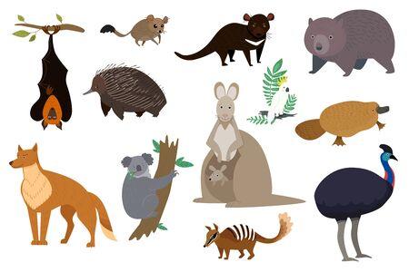 Australian animals, set of isolated cartoon characters kangaroo, koala and wombat, vector illustration