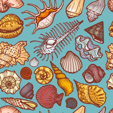 Ocean cockleshell and seashell seamless pattern concept banner, cartoon vector illustration. Sea old dweller, trip explore wildlife. 向量圖像