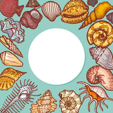 Shells round pattern concept banner cartoon vector illustration. Ocean cockleshell seashell icon, text business placement advertising flyer. 向量圖像