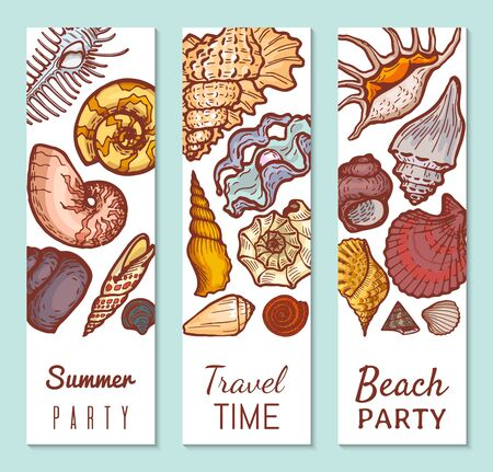Sea shell poster concept banner, summer party travel time and beach gathering flat vector illustration. Tropical vacation, explore ocean flora fauna.