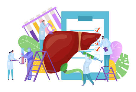 Medical liver diagnostics, tiny people, disease treatment concept, human organ, dangerous virus, cartoon style vector illustration  イラスト・ベクター素材