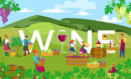 Production wine in countryside outdoors, successful agriculture, vineyard fields, harvesting, cartoon style vector illustration.