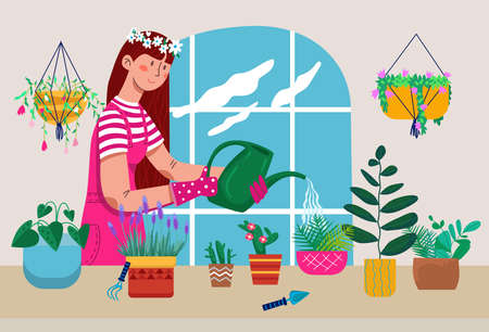 Young woman character watering domestic various plants, comfortable green garden room, homemade herb care flat vector illustration.