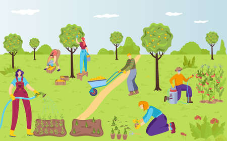 People character together outdoor gardening, female watering care flower, male plant shrub cartoon vector illustration, environmentally place.