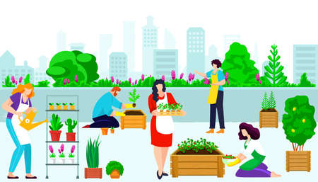 People character together roof urban gardening, female watering care green flower, male plant shrub cartoon vector illustration, town architecture. Illusztráció