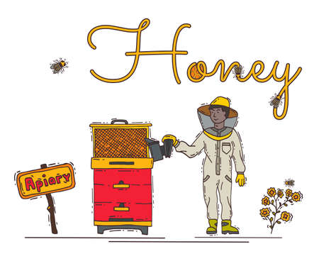 Beekeeper male character pick up honey in apiary, apiarist man person font text linear flat vector illustration, isolated on white.