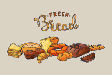 Fresh bread hand drawing sketch style, soft delicious baked pastry, bakery product cartoon vector illustration, isolated on gray.