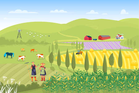 Farmer family male female harvesting campaign crop, country house collect corn, rye organic field flat vector illustration.