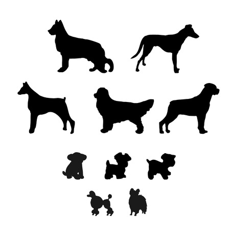 a collection of dog illustrations Vector