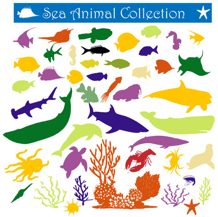 a collection of colorful sea animal illustrations