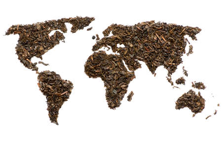 white tea: World map made of green tea, isolated on white