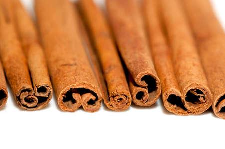 cinnamon bark: Bunch of cinnamon bark  sticks  close up