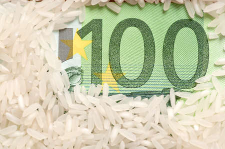 Rice grains on one hundred euro photo