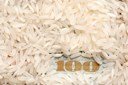 Rice grains on one hundred dollars photo
