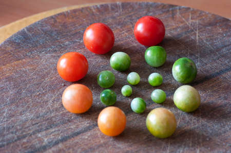 circle of life: Cherry tomatoes of different size and ripeness situated in circle, life cycle