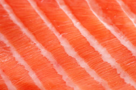 coarse: Fresh salmon fillet salted with coarse sea salt close up