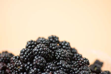 Rubus vulgaris Beeren (Brombeere) auf hellem Hintergrund Nahaufnahme Lizenzfreie Bilder