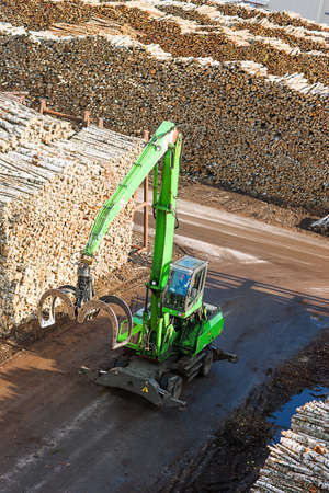 Raw materials birch wood ready for transportation in dock Stock Photo - 16596313
