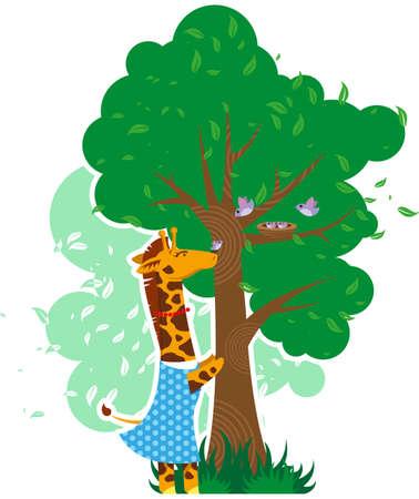 Giraffe hilft Vögel Standard-Bild - 34464640
