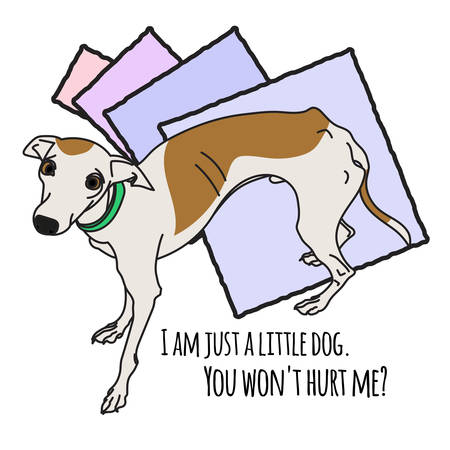 leggy: Vector Image With Pretty Italian Greyhound Illustration