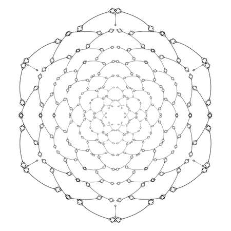 contrasting: Vector monochrome flower mandala on a contrasting background. Big snowflake