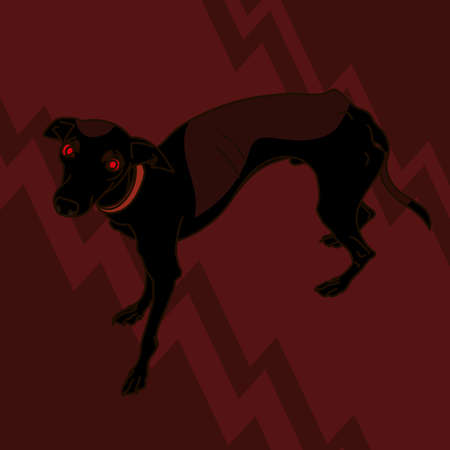 leggy: Image With Angry Italian Greyhound